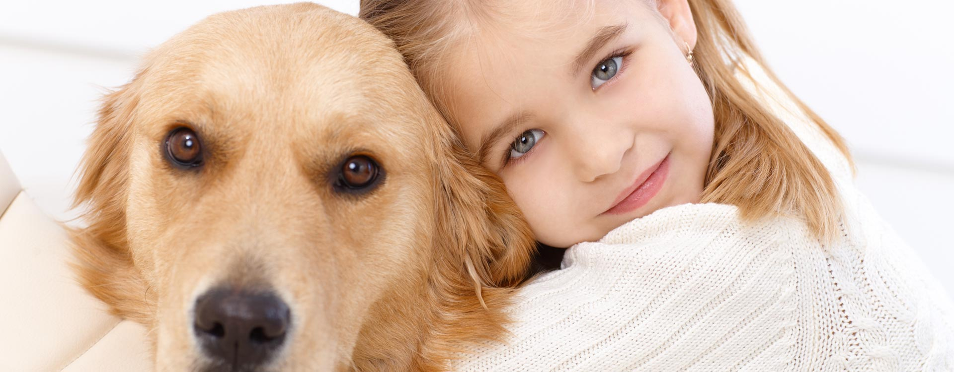 Trusted Dog Euthanasia Specialists in Maricopa AZ